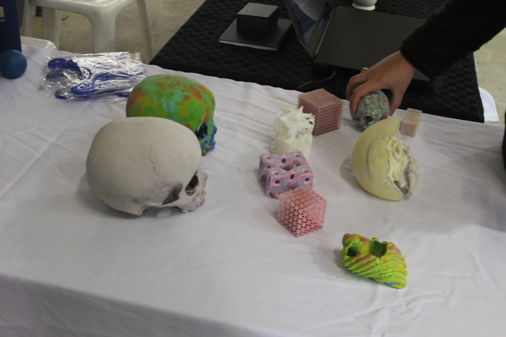 Some 3D printed skulls at Science in ACTion